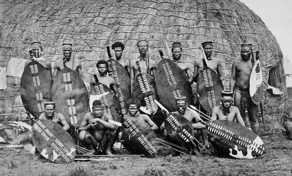 Zulus holding Nguni shields