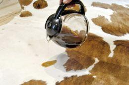 cowhide rug clean