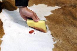 cowhide rug wipe wine cleaning.jpg