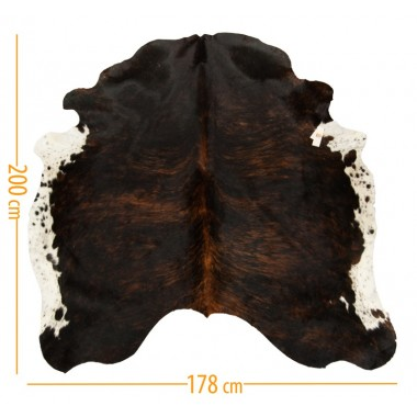 cowhide d-31 white belly